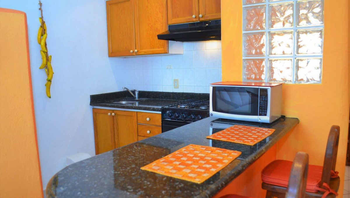 Apartment Mirichel - Puerto Vallarta Long Term Rental (6)