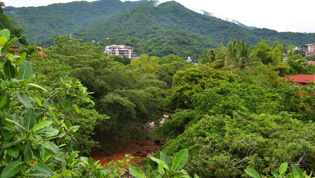 Condo Talavera Gringo Gulch - Puerto Vallarta Property For Rent  (146)