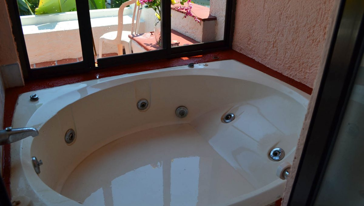 Puerto Iguana - Puerto Vallarta Rental Property  (34)