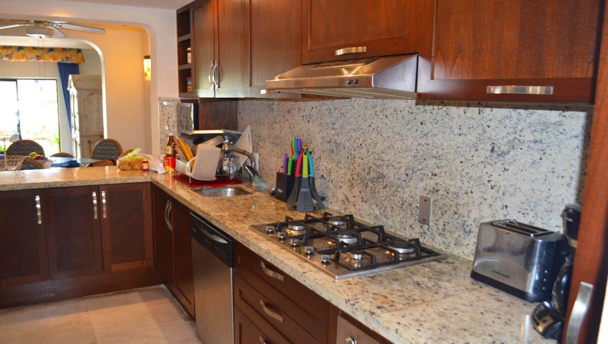 Puerto Iguana - Puerto Vallarta Rental Property  (5)