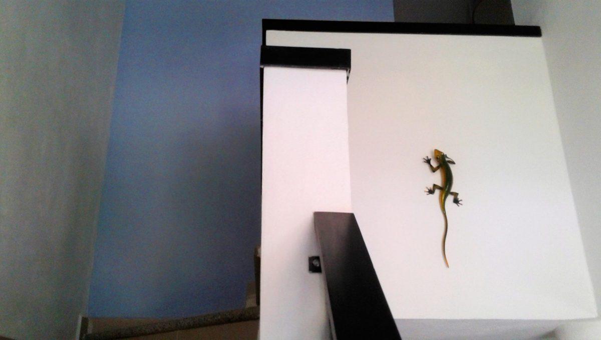 Lomas del Sol 139 - Nuevo Vallarta For Rent Long Term (11)