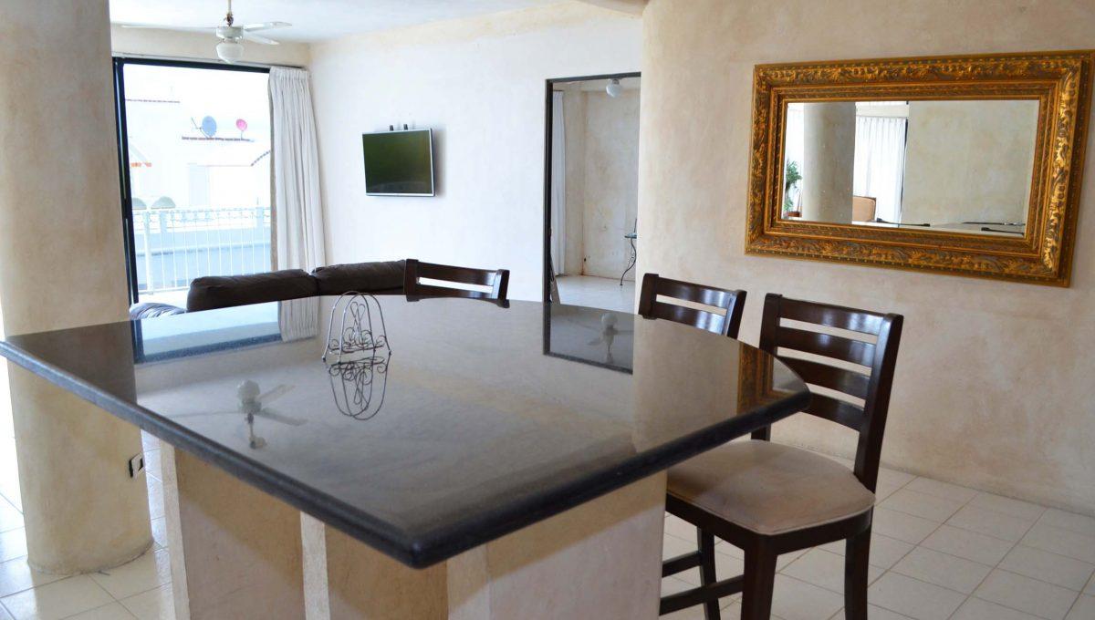 Apartment Amapas 13 - Puerto Vallarta Long Term Rentals (13)