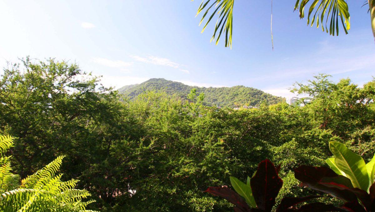 Apartment La Leonera - Puerto Vallarta Gringo Gulch Vacation Long Term Rental (10)