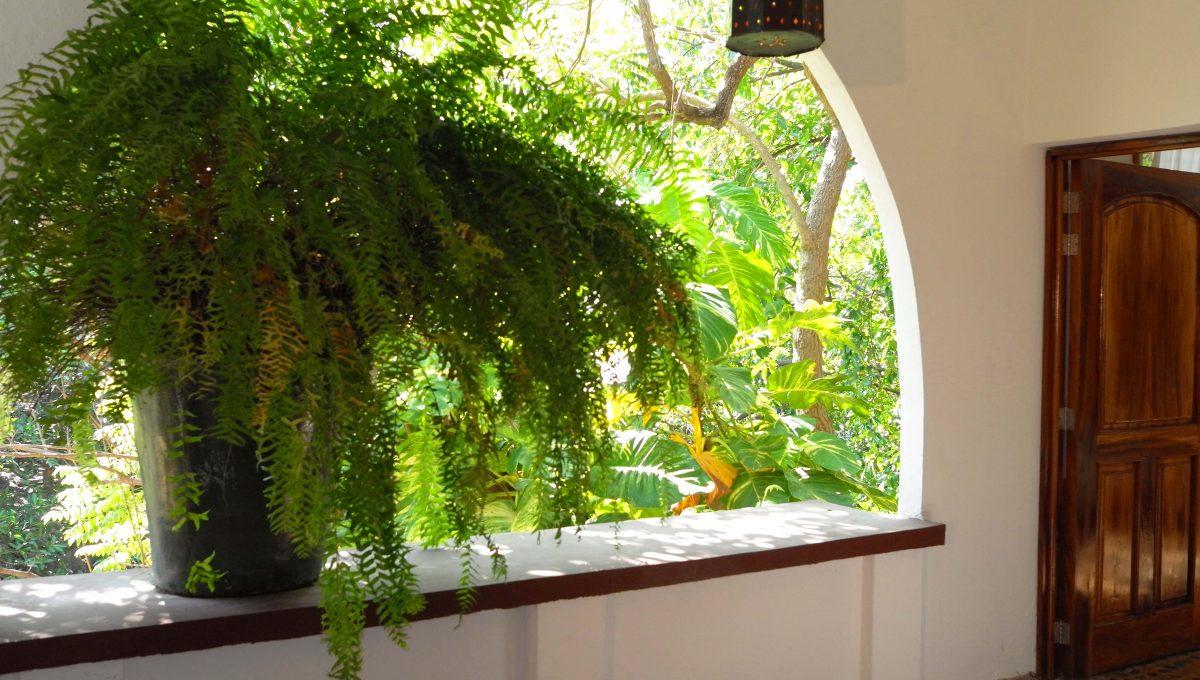 Apartment La Leonera - Puerto Vallarta Gringo Gulch Vacation Long Term Rental (14)