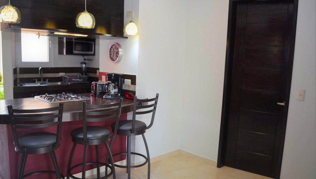 Apartment Marlet 5 - 5 de Diciembre Long Term Rental (4)
