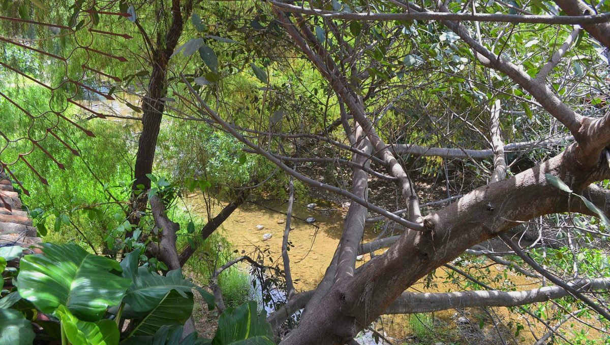 Casita Amarilla - Gringo Gulch Outdoor Living Vacation Rental Puerto Vallarta (18)